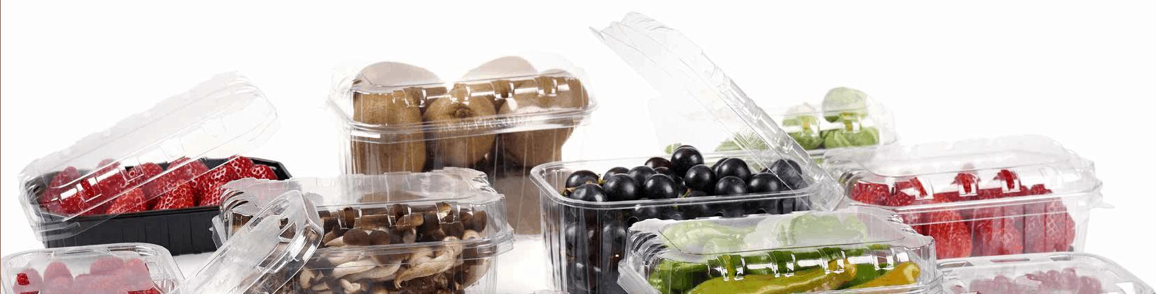 Caserole fructe si legume